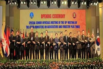ກອງປະຊຸມພິເສດເຈົ້າໜ້າທີ່ຂັ້ນສູງກະສິກຳ, ປ່າໄມ້ AMAF ASEAN+3