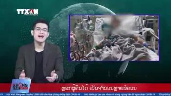 NNo Fake News